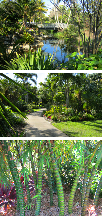 Mounts Botanical Garden In West Palm Beach Florida